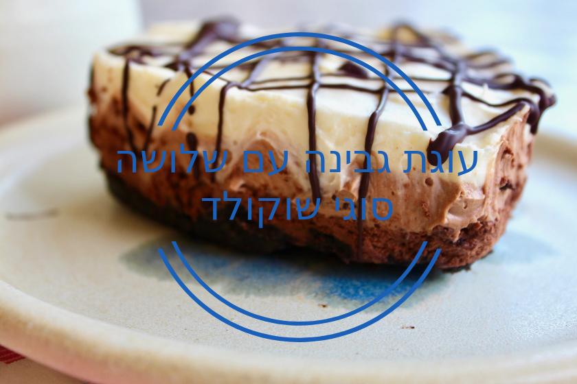 עוגת גבינה עם שלושה סוגי שוקולד