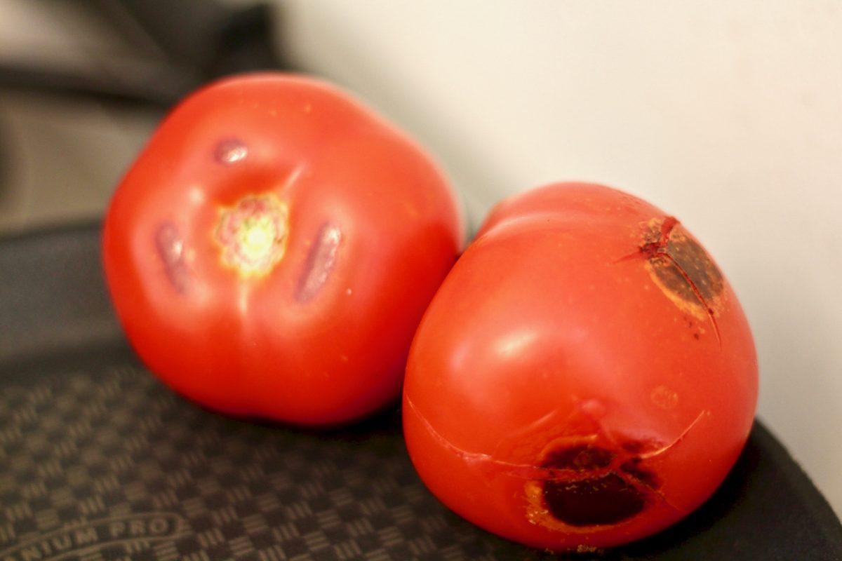 עגבניות אחרי צליה למרק שעועית שחורה