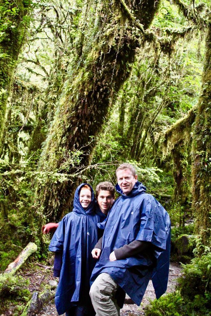 בתוך היער המכושף