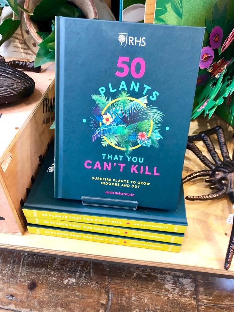 אולי הייתי צריכה לקנות לי את הספר...